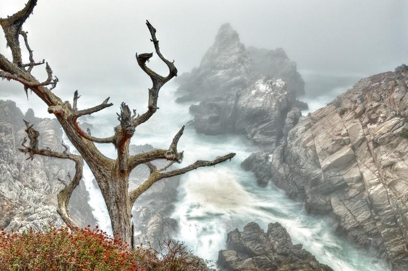 Pinnacle Rock, Point Lobos, California
