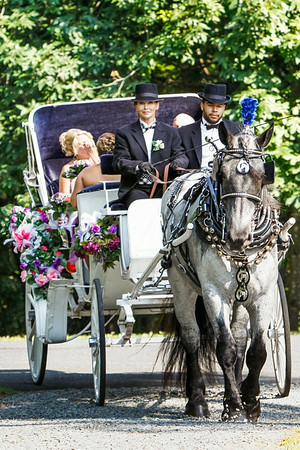 Ceremony - The Bridal Carriage Arrives