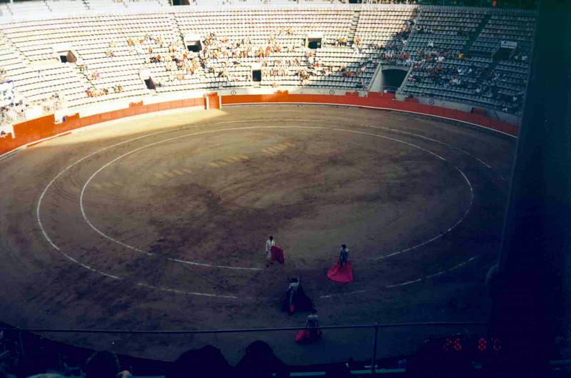 Bull Fight 2.jpg