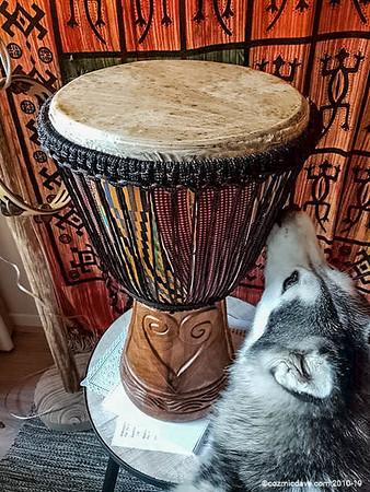 Cozmic Dave's Drum Store