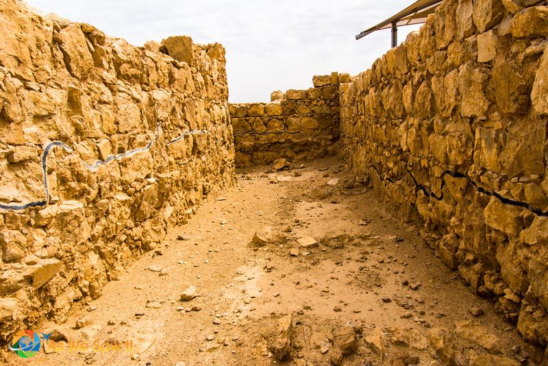 Masada-8973.jpg
