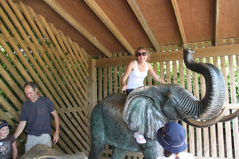 colchester zoo (83).jpg
