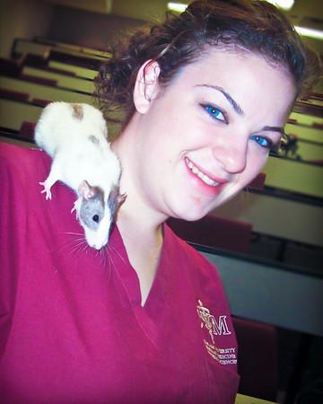 Sarah's Pet Sitting Business