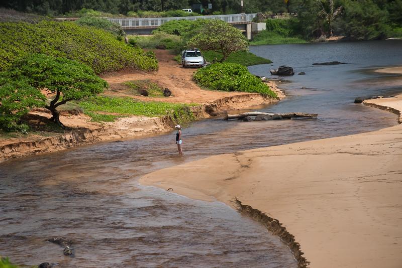 Between River And Ocean