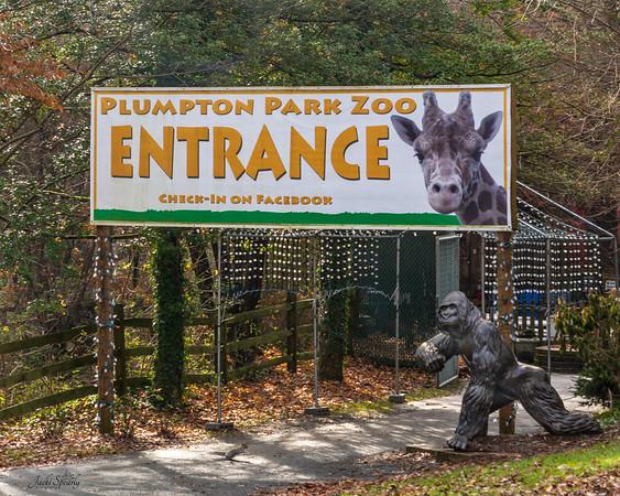 Plumpton Zoo 11/25/18