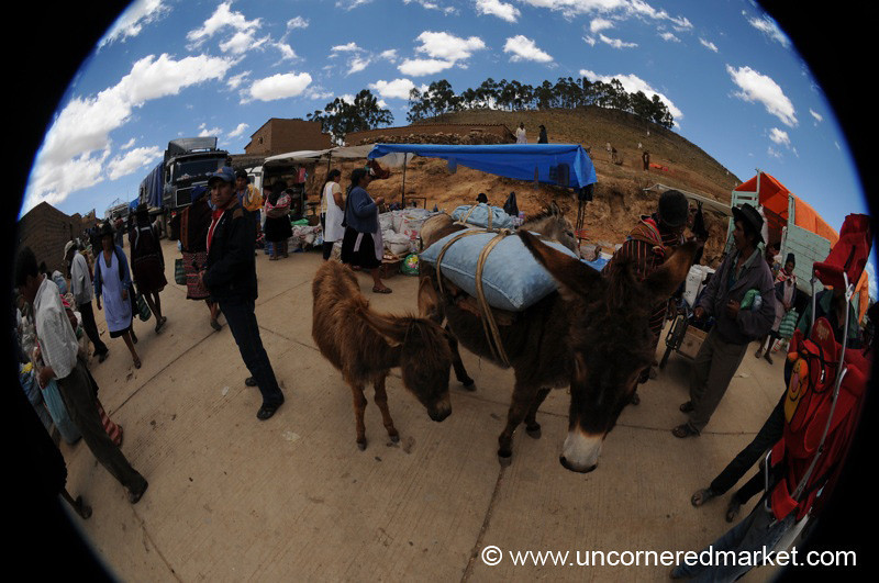 Fisheye View of Tarabuco Market - Bolivia