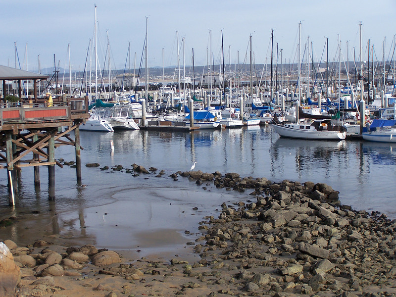 Low tide in Monterey Bay