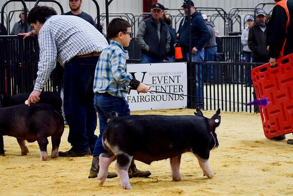 Seth Rutledge Memorial Swine