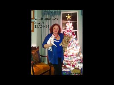 Christmas 2014 Skype