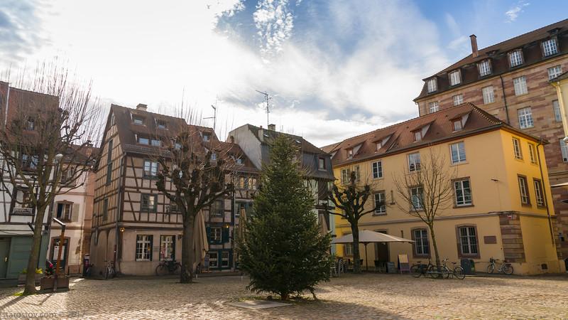 20170223-1212_-Strasburg-93.JPG