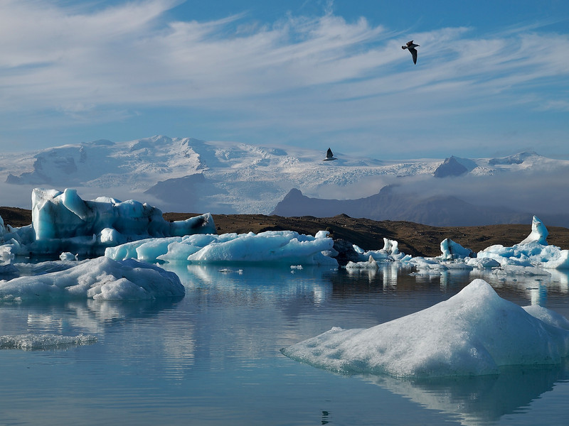 Those birds again helping my composition. The spectacular Jokulsarlon lagoon on the south east side of Iceland. Naturally created by the glacier meltwater from Vatnajokull, which is Europe's largest glacier. The lagoon is full of floating icebergs such as this which are constantly moving. Extremely dangerous too and quite common for them to topple over. As such nobody is allowed to moor up and walk on them. This place was the setting for the James Bond (Pierce Brosnan) film 'Die Another Day' in 2002. The lagoon was deliberately blocked off from the sea (which it connects) for 6 weeks in February in order to prevent salt water inflow (the lagoon is 50/50 salt/fresh water). The lagoon was then closed off for 2 weeks to allow the saltwater to sink thus leaving the freshwater on top to freeze. Once the lagoon was frozen filming commenced :-)