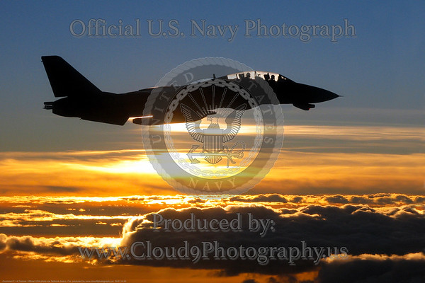 USN F-14 Tomcat Silhouette Pictures