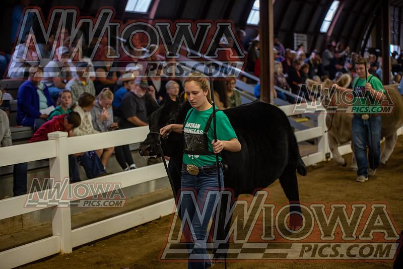 Clay County Fair - Day 3 - 9 - 13 - 21