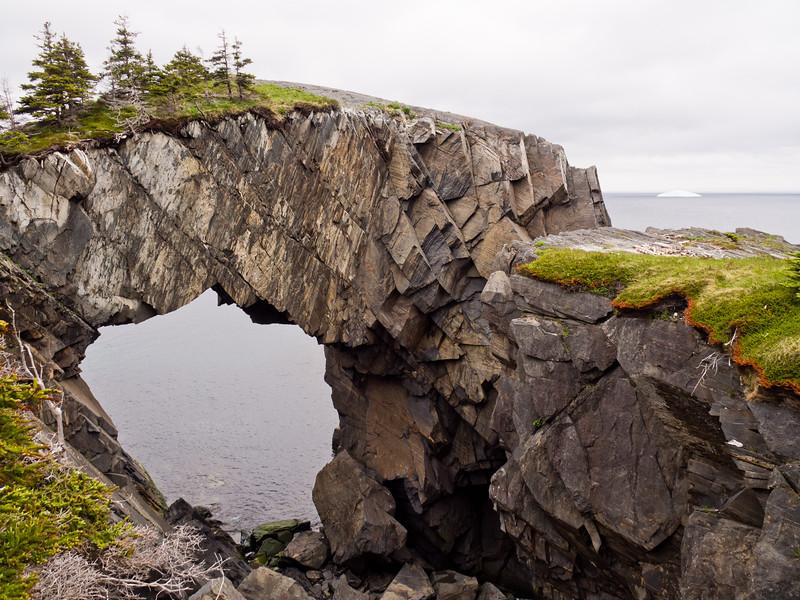 Berry Head Sea Arch