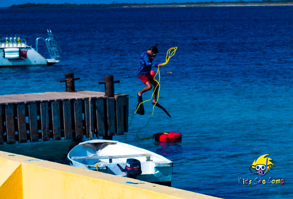 Buddy Dive Bonaire Summer July 20-27