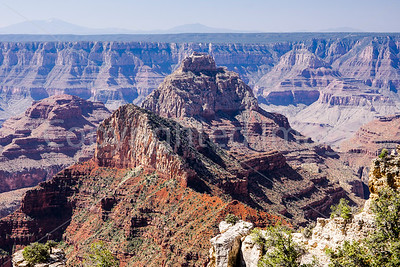 The Canyon and Other Northern AZ Sights