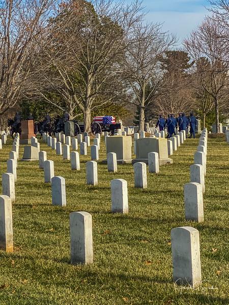 Arlington-10.jpg