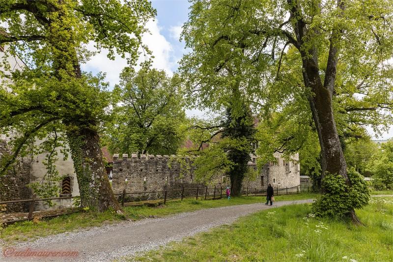 2017-05-03 Schloesser Aargau - 0U5A5633.jpg