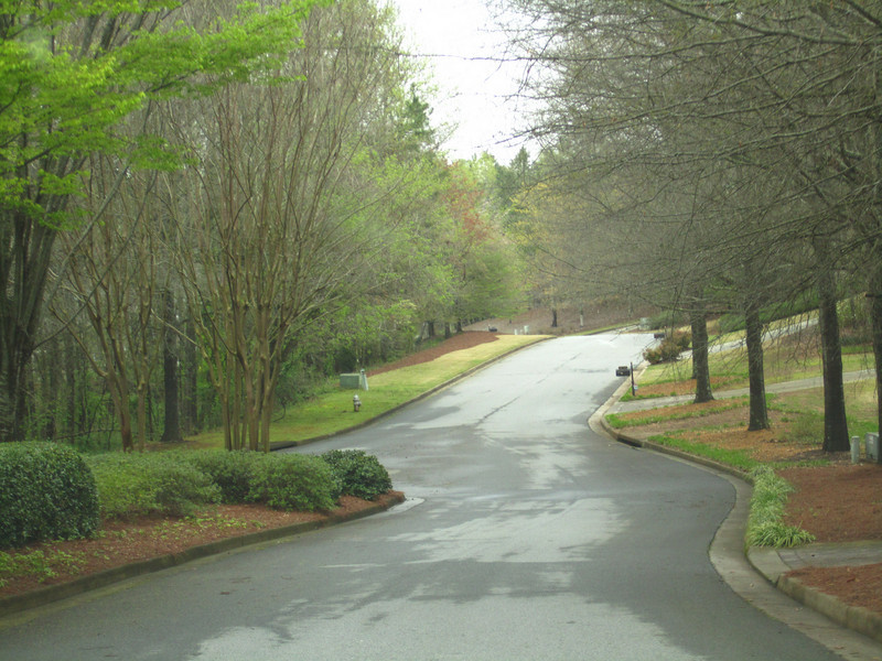 Champions View Milton Georgia Golf Community (67).JPG