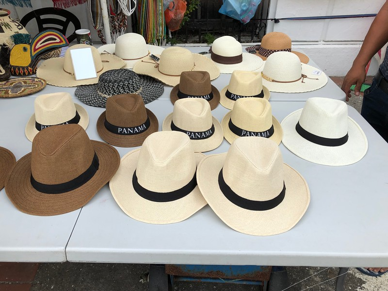 A collection of Panama hats displayed on a table.