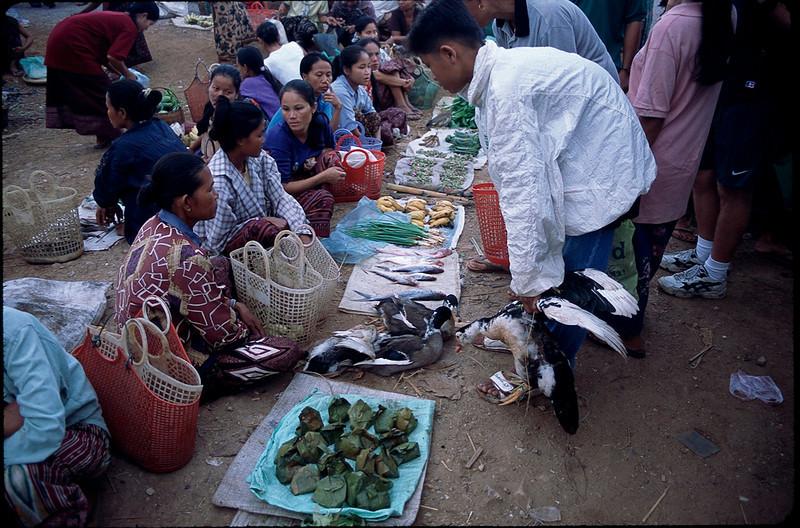 Laos1_054.jpg