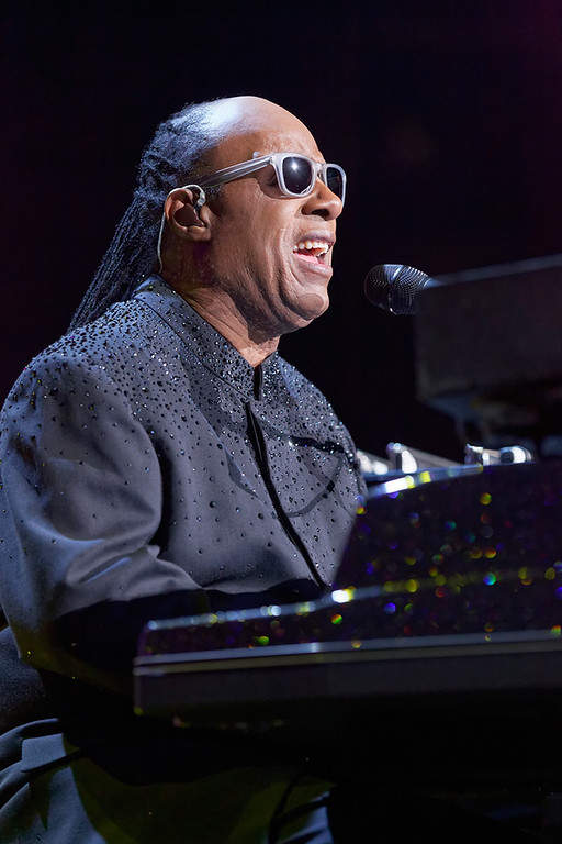 . Stevie Wonder performs at the Palace of Auburn Hills on Nov. 20, 2014. Photo by Ken Settle