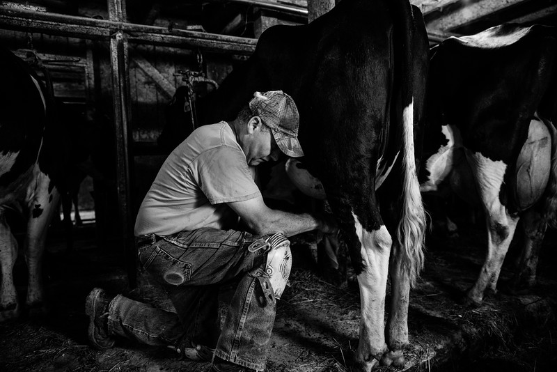 Dairy Farm_Terry BW1.jpg