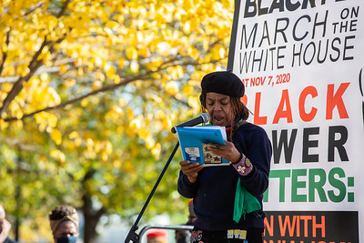 Black People's March on the White House, Washington DC, November 7