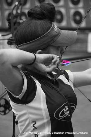 2018 Mayors Cup Archery  Connection