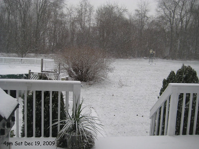 Snow Dec 19-20 2009
