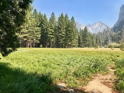 11 Zumwalt Meadow