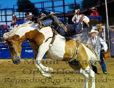 2016 Bronc Riders Sunday 9/4/2016