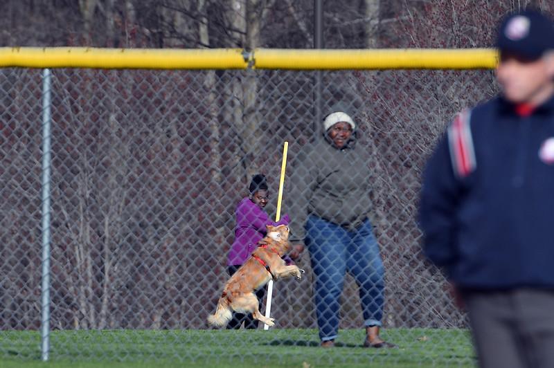 softball_0459.jpg