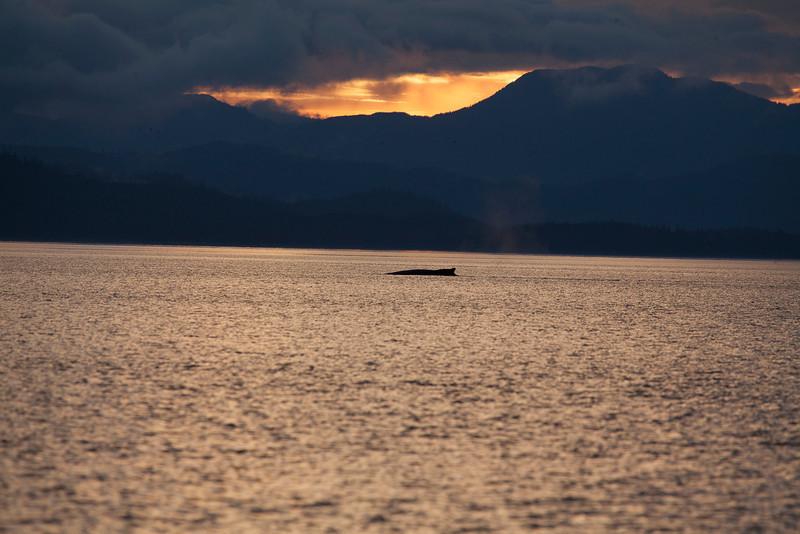 Alaska-152.jpg