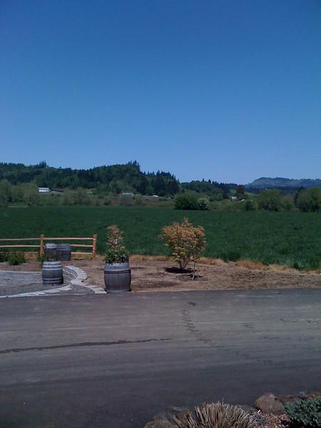 Laurelhurst winery