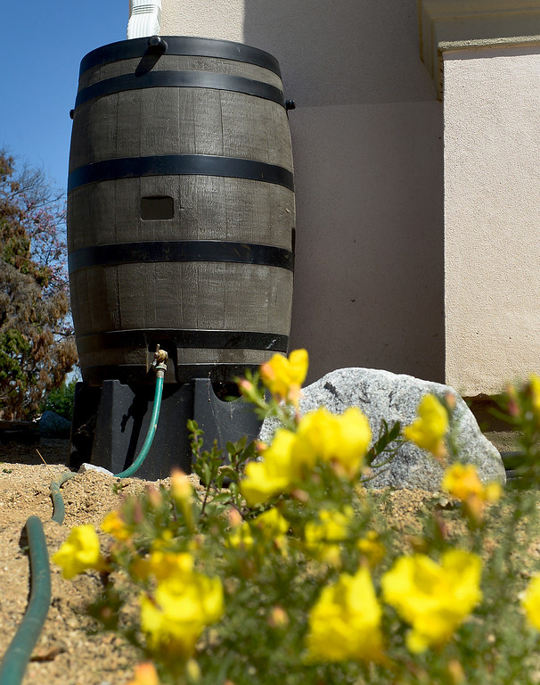 """. One of four rain barrels at Jim Crabtree and his wife Rita Delehanty \'s green home \""""Steel Memories\"""" in Hacienda Heights Friday, April 19, 2013. The steel home was completed in 2011.  (SGVN/Staff Photo by Sarah Reingewirtz)"""
