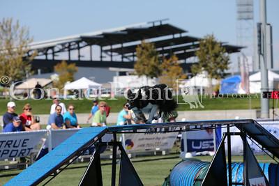 Cynosport - Grand Prix Semifinal - Group A