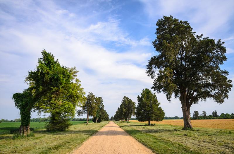 Westover Plantation