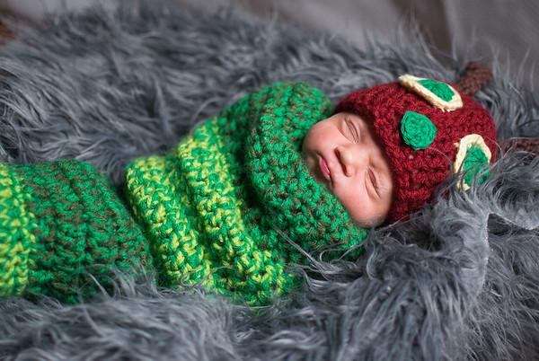 Willow's Newborn Session