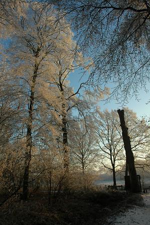 Winter Wonderland 2007