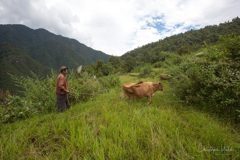 punakha-dzong_chorten-nebu_20120917_8660.jpg