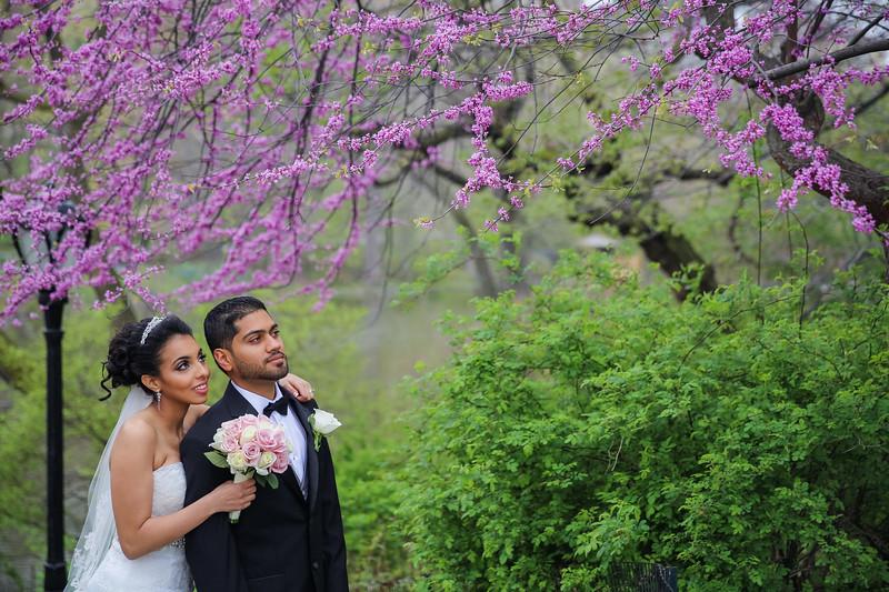 Central Park Wedding - Maha & Kalam-86.jpg