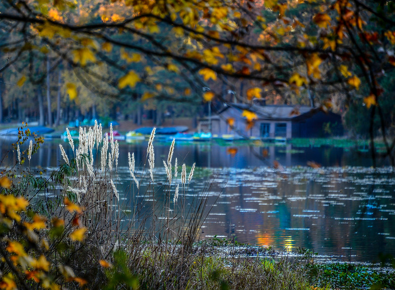 Across the Lake.jpg