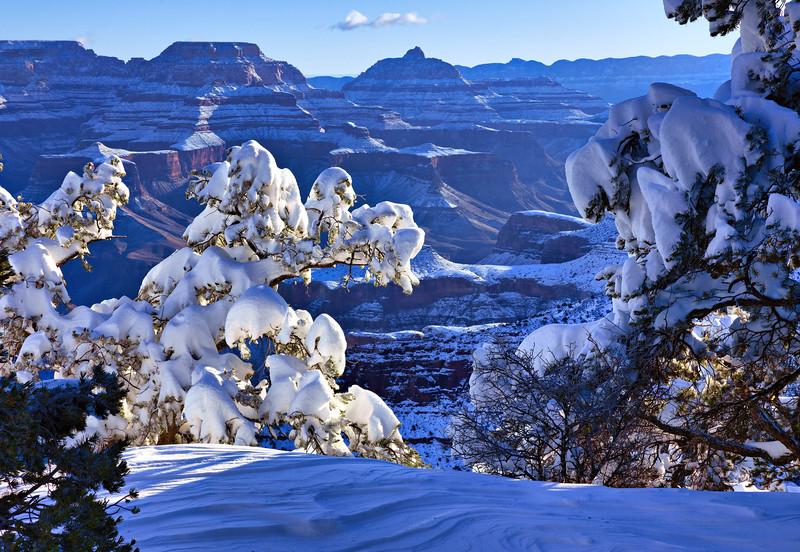 8296 Grand Canyon