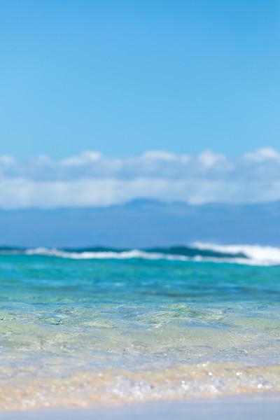 Travel_Hawaii_03052020_0208.jpg