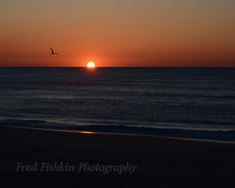 Sunrise 3 04_30_18.JPG