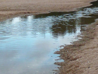 Reflets sur l' eau