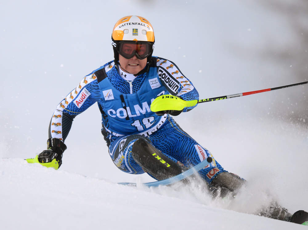Description of . Swede Mattias Hargin competes in the first run of FIS World Cup men's slalom on December 8, 2012 in Val d'Isere, French Alps.     AFP PHOTO/PHILIPPE DESMAZES/AFP/Getty Images