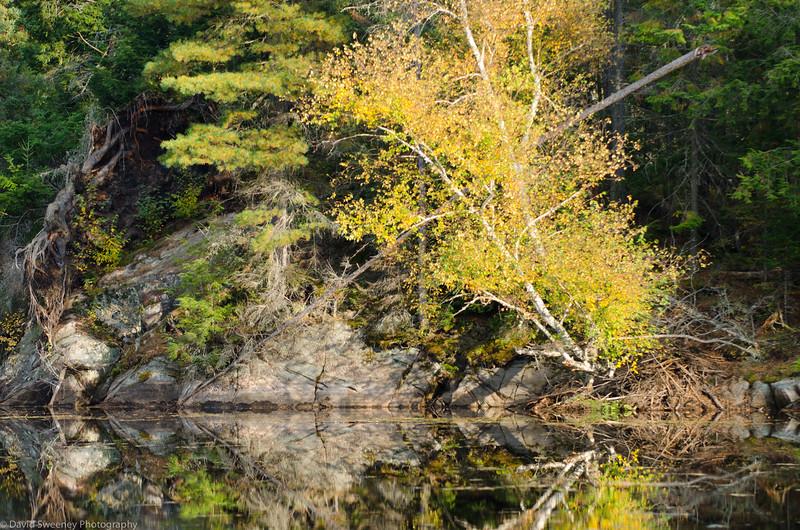 East Fork Rock.jpg