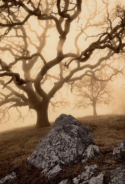 Rock Ridge, Mt. Diablo, California